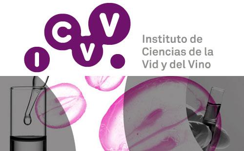 Logo Icvv