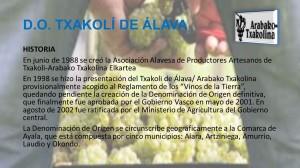 Visita a D.O. Txakoli de Álava / Arabako Txakolina