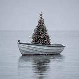 Rbol Navidad En La Barca